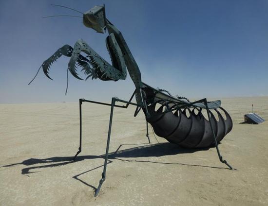 The 2012 Praying Mantis
